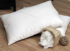 Organic Pillows - Organic Lifestyle Cotton Pillow