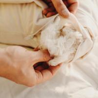 Organic Pillows - Savvy Rest Organic Kapok Pillow