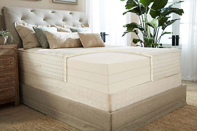 Organic Latex Mattress - PlushBeds