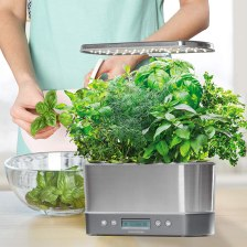 Indoor Garden Kit - AeroGarden Harvest Elite Stainless Steel
