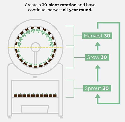 Indoor Garden - OGarden Smart 90 Plants