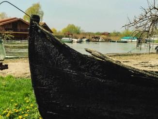 Delta Dunarii. FOTO Cătălin Schipor