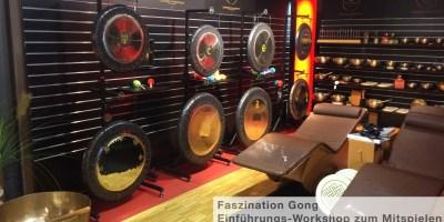 meinl sonic energy gong