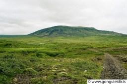Horft frá slóðanum í átt að Búrfelli hinu megin Sogs.