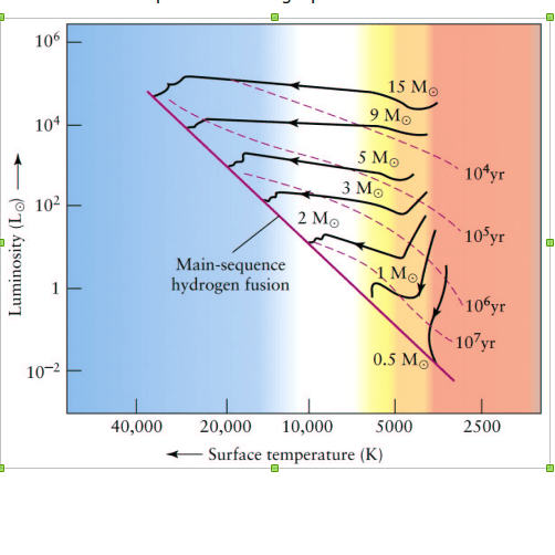 Evolutionary tracks of protostar of different masses to main sequence