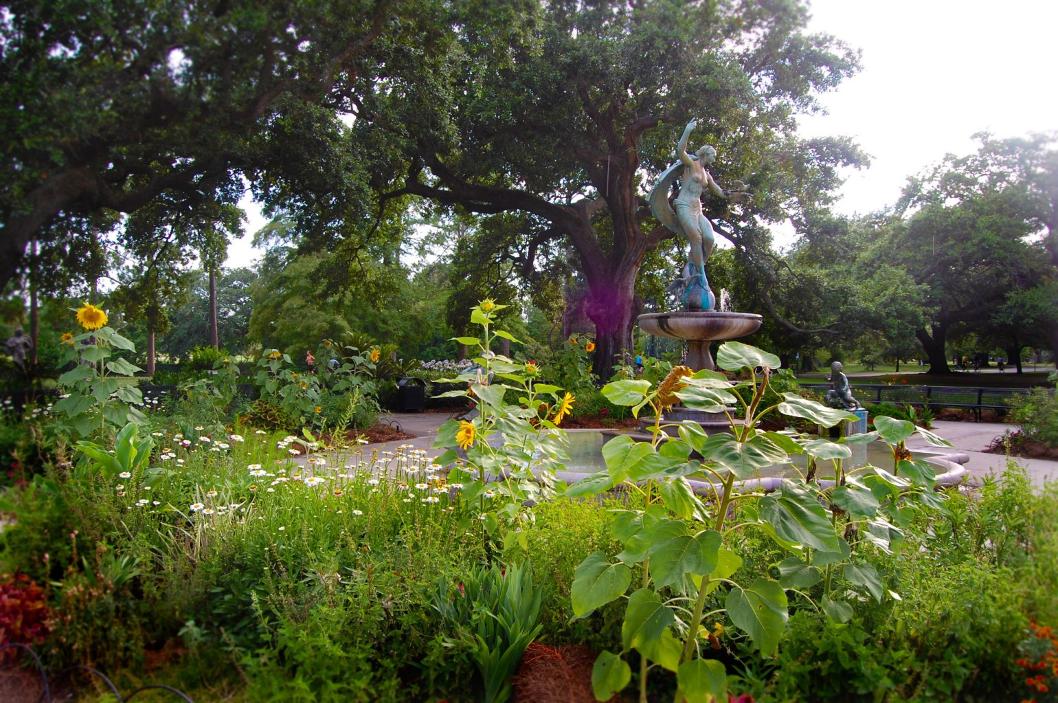 Flora, fauna, and fountain in Audubon Park. (Photo: Anna-Marie Babington)
