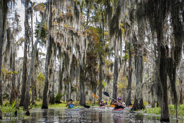 A kayak swamp tour through Shell Bank Bayou. (Photo: Rebecca Ratliff)