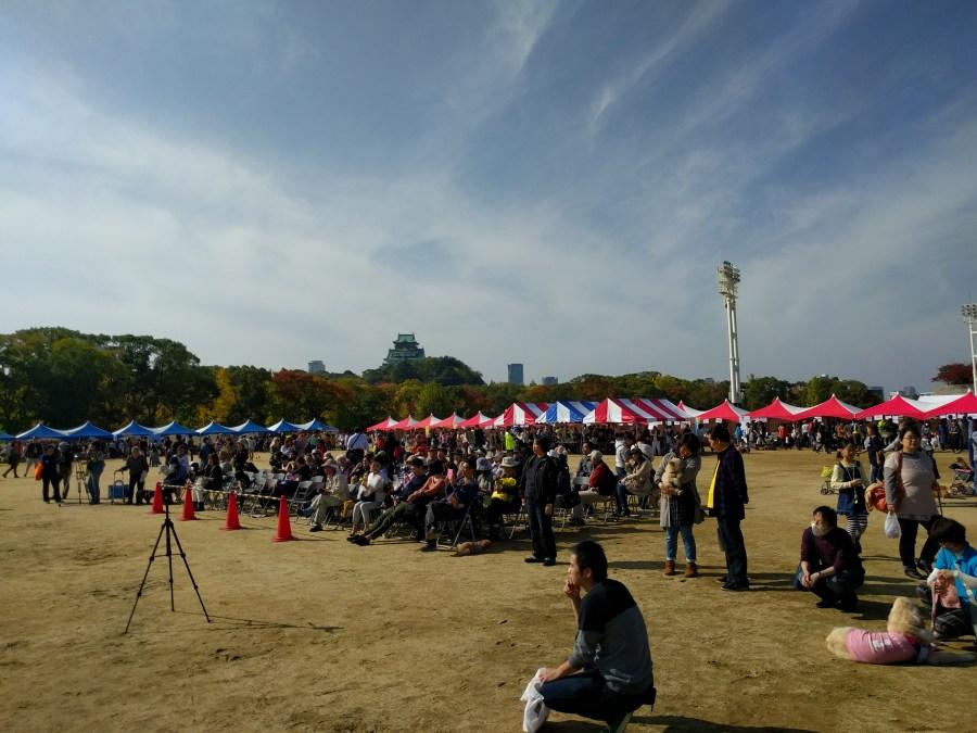 大阪城動物愛護フェスティバル開催されました!