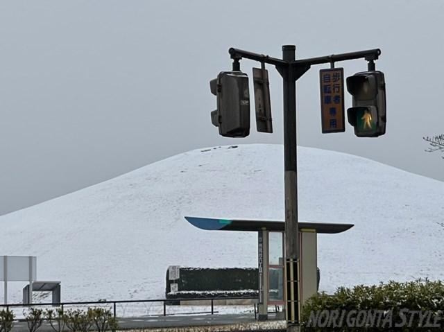 山公園雪化粧