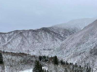 クマ牧場からの景色