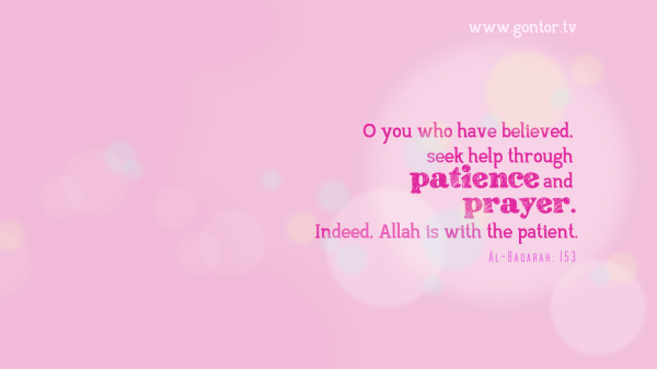 Patience and Prayer Wallpaper simple elegant pink gontor tv