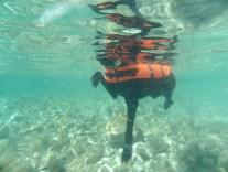 Unterwasserpips mit Schwimmweste!