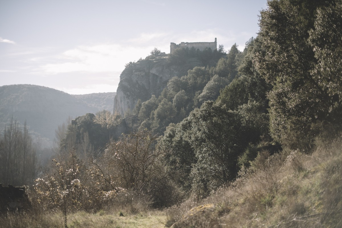 Magia y Épica en la literatura medieval: el poema de Fernán González.