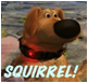 Squirrel - Up Movie