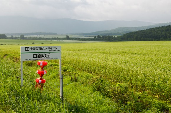 Hakugin-no-Oka (Silver) Hills in Horokanai