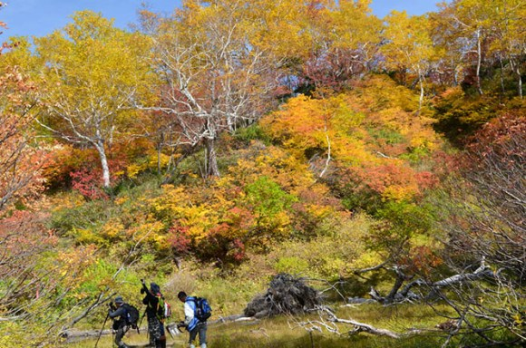 Daisetsu Kogen Onsen Hiking Tour with Fall Foliage in Kamikawa