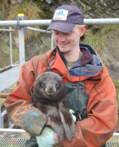 Donald holding a seal