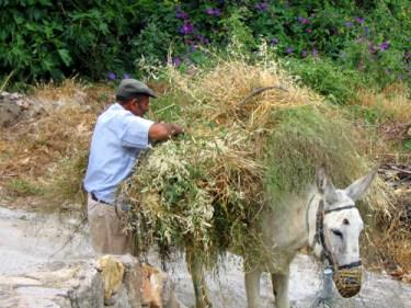 Man in Almeria