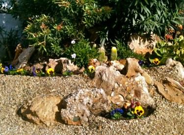 Little garden Almeria Andalucia Spain