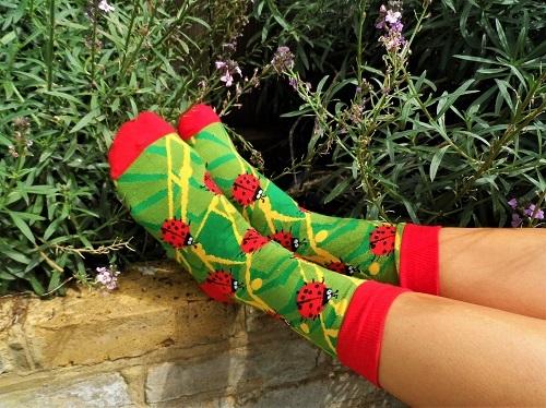 Lucky socks with Ladybirds