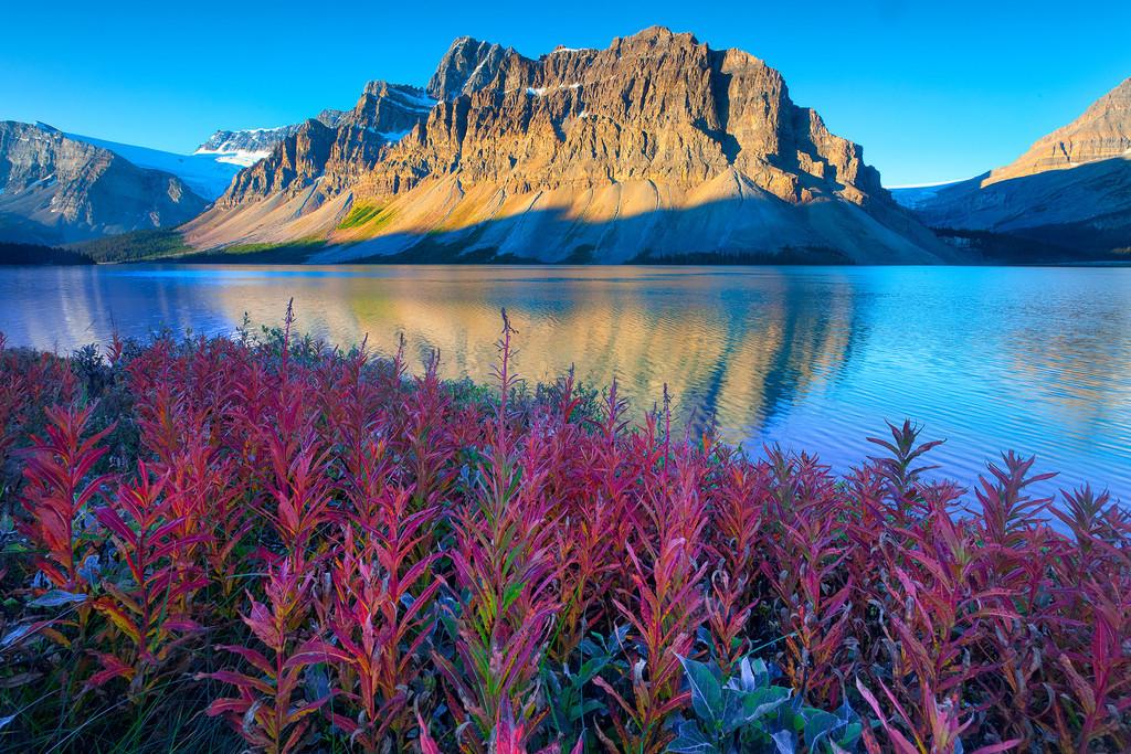صور عن الطبيعة اجمل صور عن الطبيعة للموبايل صباح الورد