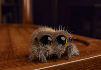 Take 20 Seconds to Meet Lucas, the Cutest Animated Spider We've Ever Seen