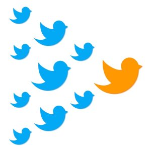 Building your Twitter community