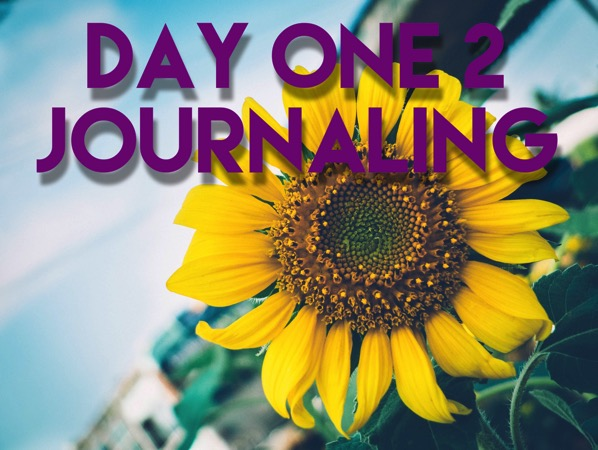 Day One 2 App