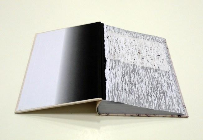 Buzz-Spector_Bruno-David-Gallery_Efface-Nabokov_e