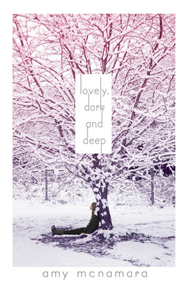 Lovely Dark And Deep Amy McNamara Book Cover
