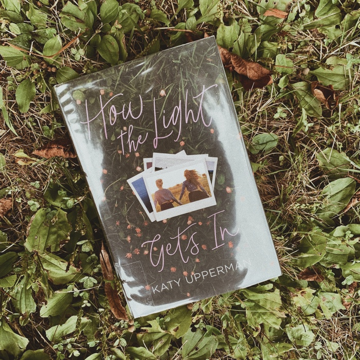 How The Light Gets In is a very quick read about grief, family, and picking yourself back up after a fall.