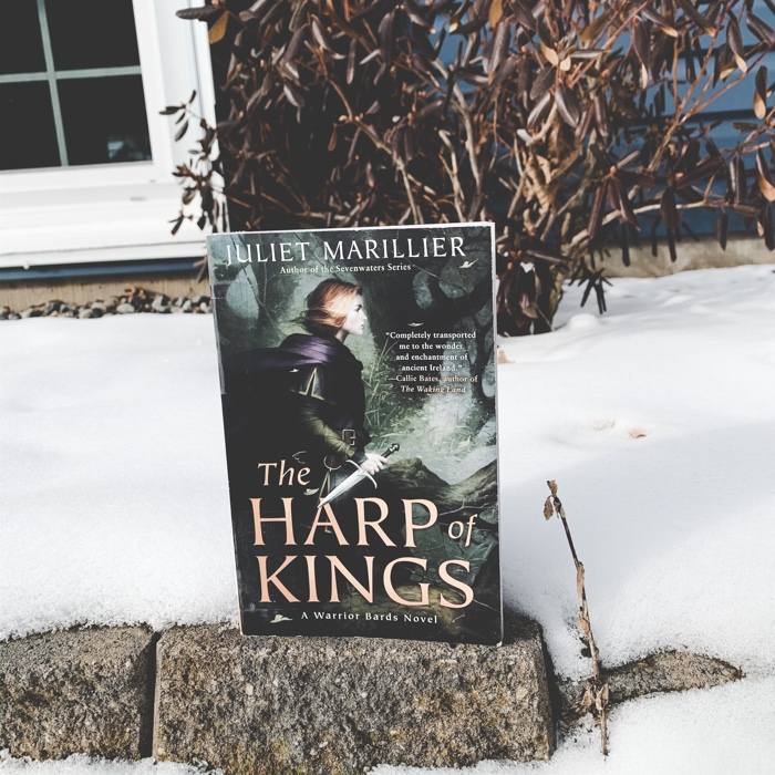 I was SO excited to get my hands on Harp Of Kings. This book is the first in her new Warrior Bards series.
