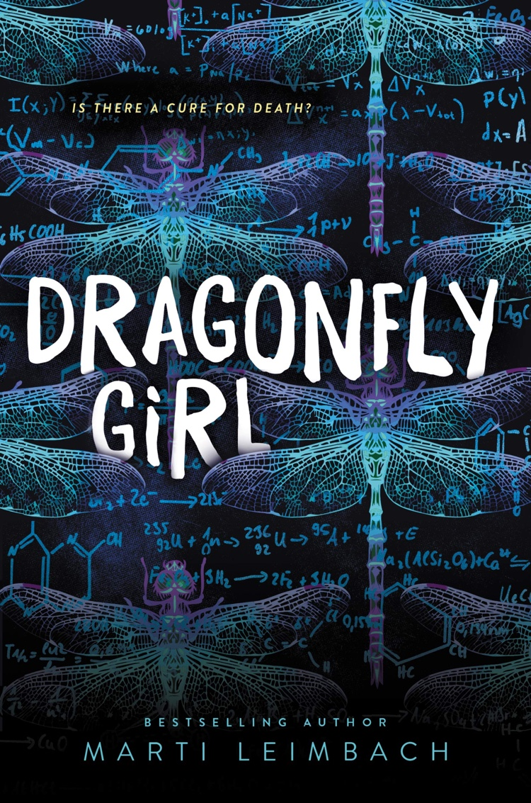 Dragonfly Girl by Marti Leimbach | Book Review