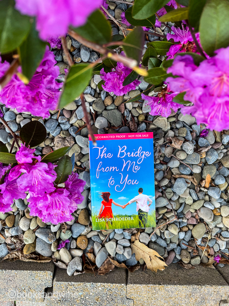 The Bridge From Me To You by Lisa Schroeder | Book Review