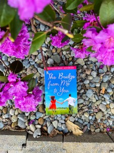 The Bridge From Me To You by Lisa Schroeder is a YA contemporary book that has been on my shelf for years. It's worth picking up.