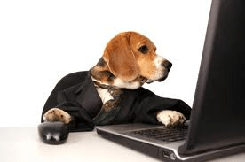 beagle computer