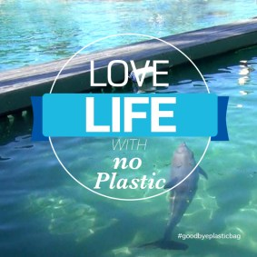 Their Life with No Plastic.