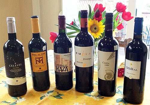 bottles of the ribera del duero wines we tasted