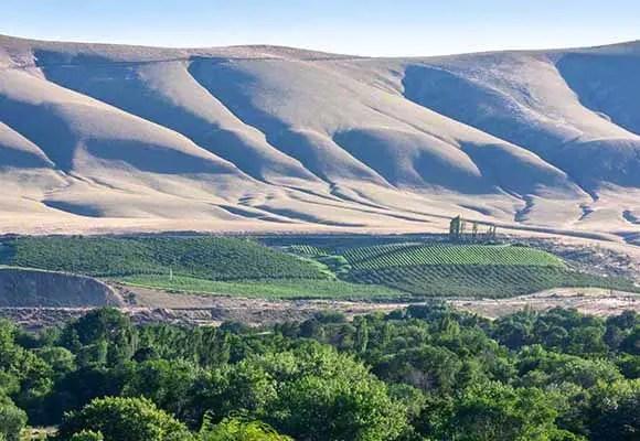 Horse Heaven Hills AVA