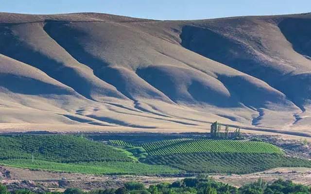 horse heaven hills wine region ava