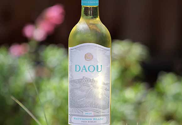 Sauvignon Blanc wines for spring time