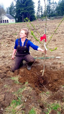Good Cheer Garden Manager, Camille Green, placing one of the first trees to be planted at The Big ACRE.
