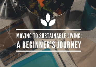 Moving to Sustainability - A Beginner's Journey