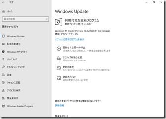 Windows11-IPUpdate05