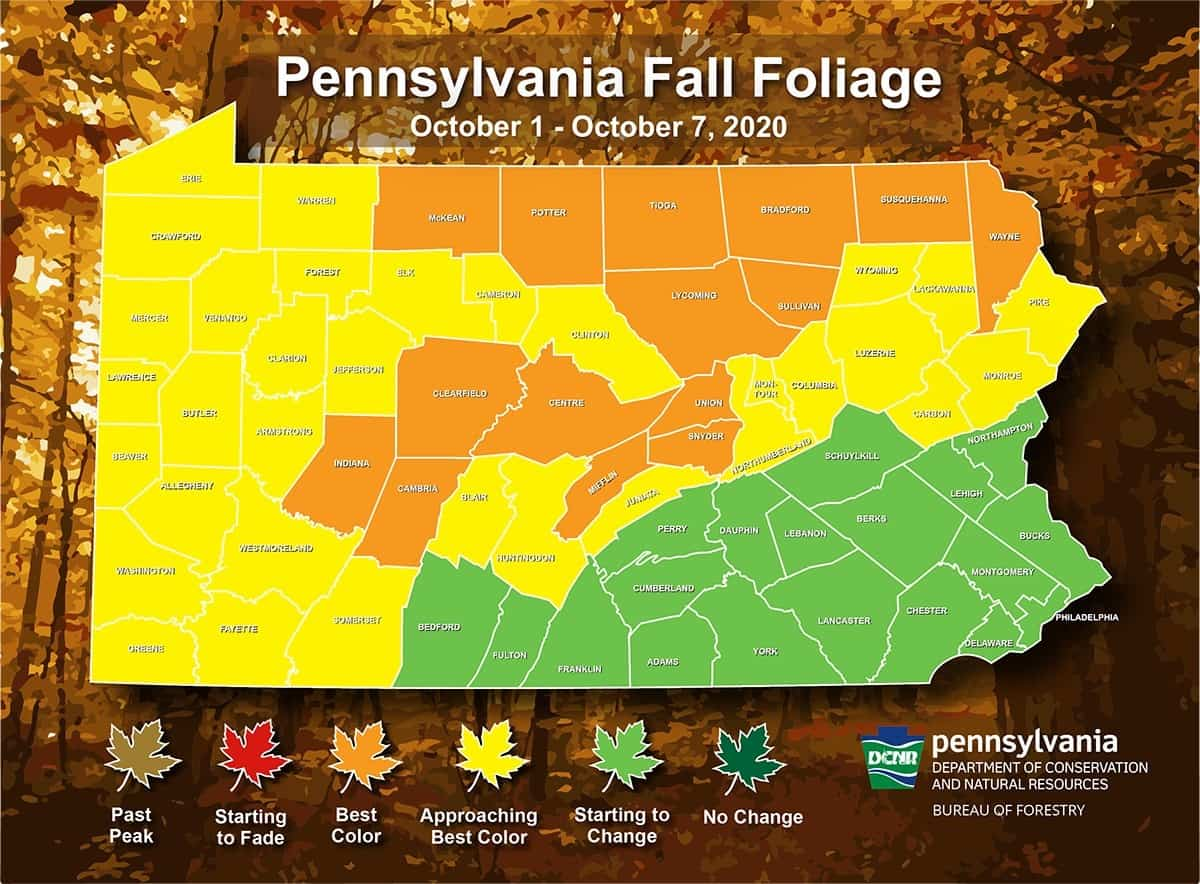 Pennsylvania Fall Foliage When To See Fall S Best Colors