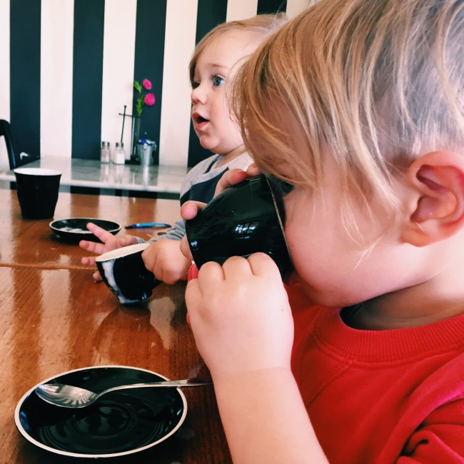 Mr Moo enjoying a babycino at our local cafe