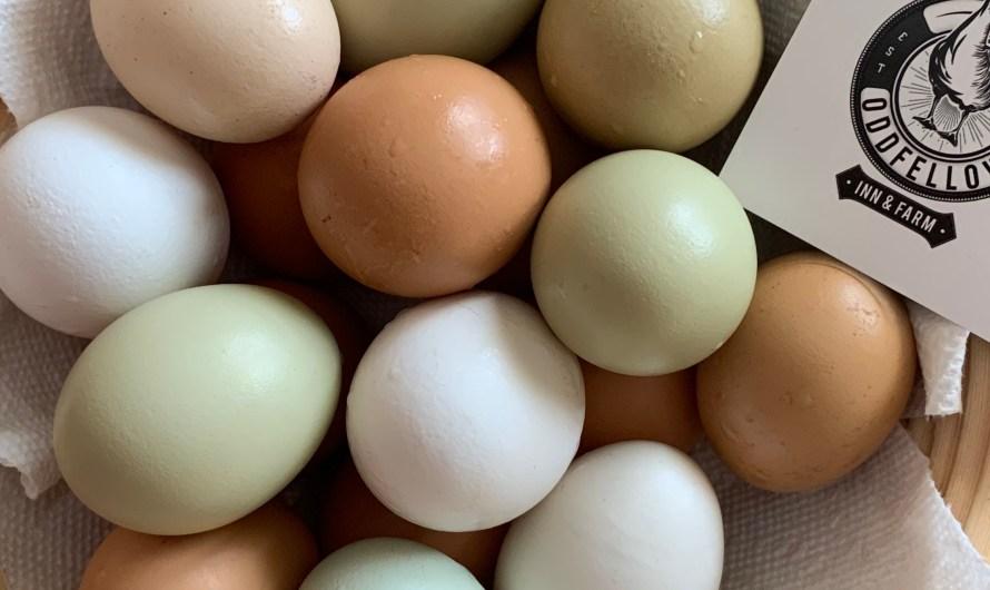 Eggs, eggs, eggs! Beautiful eggs!