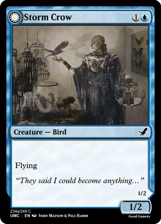 StormCrowTransformA