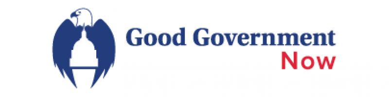 Good Government Now