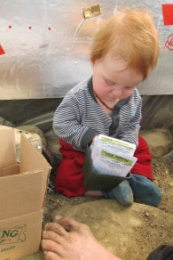 Waylon helping pick the onion seeds